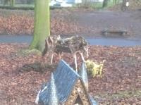 Fairy-Garden-Vale-Park